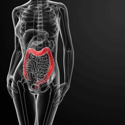 iFOBT – Darmkrebsvorsorge