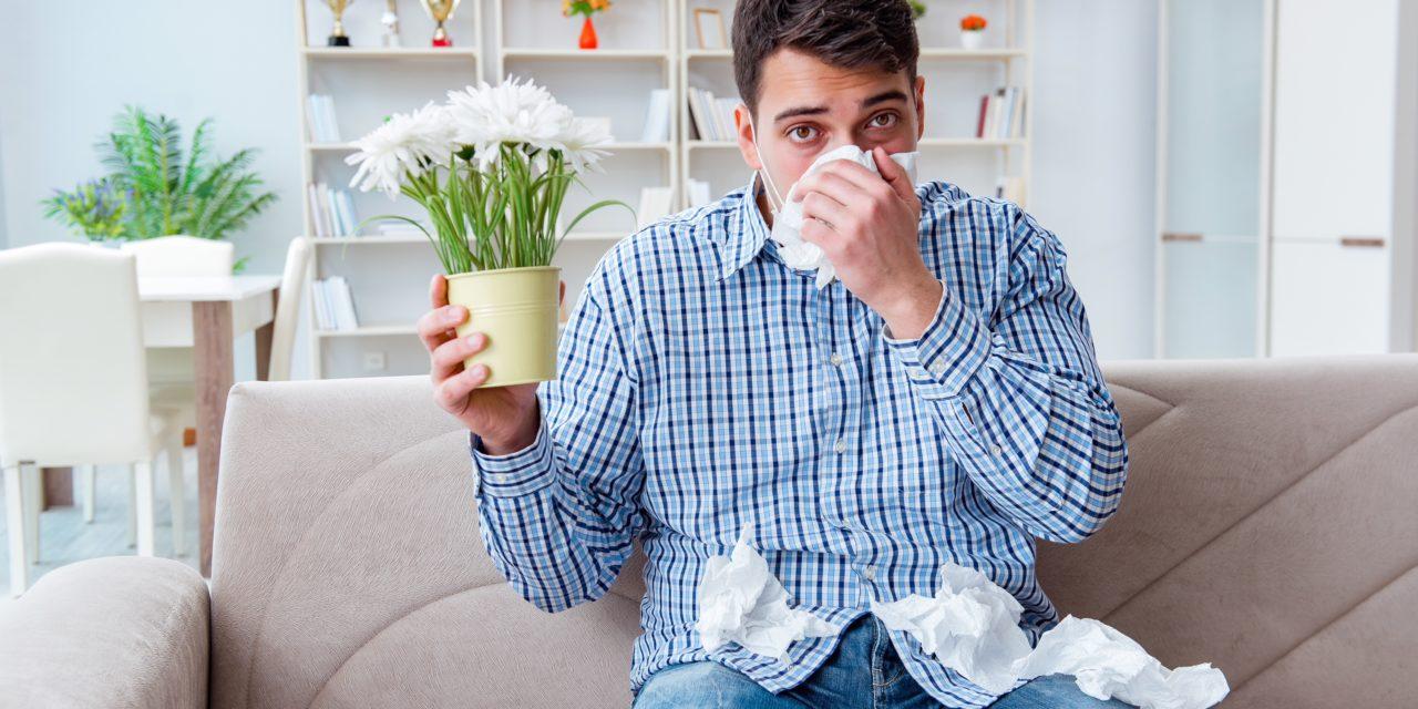 Allergiediagnostik: Prick und/oder Spez. IgE?